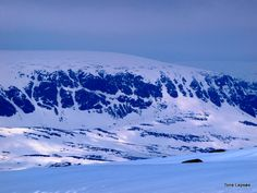 HARDANGERVIDDA, NORWAY. TONE LEPSOES PICTURES.