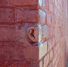 / Walls have ears...