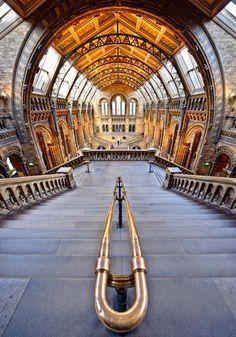Natural History Museum, London, England, UK