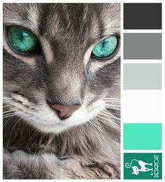 Bright Eyes - Mint Green, Teal, White, grey, pastel, shade, tone, dark, charcoal - Designcat Colour Inspiration Board