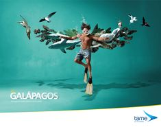Stunning Brand Design from Ecuador's Tame Airlines Creative Advertising, Ads Creative, Advertising Poster, Advertising Campaign, Advertising Design, Creative Ideas, Street Marketing, Guerrilla Marketing, Creative Banners