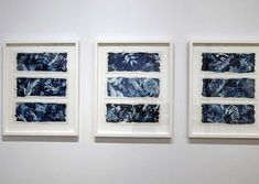 The Nature of Blue Cyanotypes Sun Prints, Framed Prints, Alternative Photography, Cyanotype, Ceramic Artists, Art Object, Diy Art, Fiber Art, Art Decor