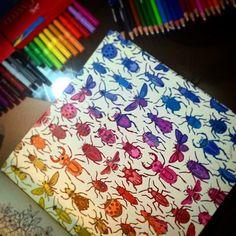 Floresta Encantada Secret Garden Coloring Book, Coloring Book Art, Colouring Pages, Adult Coloring, Wreck This Journal, Lost Ocean, Secret Garden Book, Johanna Basford Secret Garden, Johanna Basford Coloring Book