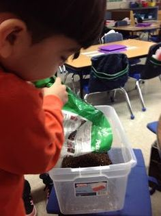 Mealworm mealworm journal student teaching curriculum and we made a compost bin in our kindergarten classroom heres how we did it ccuart Image collections