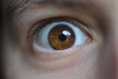 Muestrame by Claudia Crempien - PhotoBlog eyes