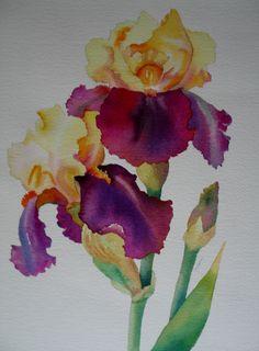 Nel's Everyday Painting: 2 Toned Iris Watercolor