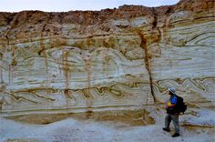 A rather spectacular example of a preserved slump (soft sediment deformation).