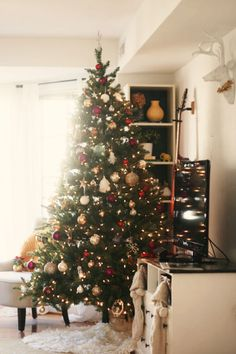 my christmas tree :)