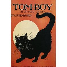 Vintage Poster Tom Boy Rag Two Step Black Cat Moon Chicago Bradford Vintage Poster Repro - I Love Cats, Crazy Cats, Cute Cats, Sheet Music Art, Vintage Sheet Music, Black Cat Art, Black Cats, Black Animals, Statues