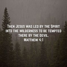 If the devil tempted the son of God what makes you think he doesn't tempt you?