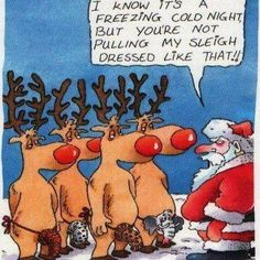 Christmas jokes: Twas the night before Christmas. Welcome to the Christmas jokes page. Enjoy these hillarious jokes on Christmas, and share them with a friend. Funny Christmas Jokes, Funny Christmas Pictures, Naughty Christmas, Christmas Cartoons, Christmas Quotes, Christmas Humor, Christmas Fun, Funny Pictures, Christmas Things
