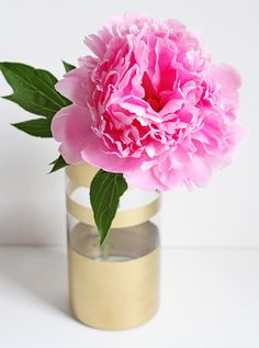 peony in gold painted glass, domino