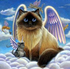 by Randal Spangler Crazy Cat Lady, Crazy Cats, Baby Animals, Cute Animals, Frida Art, Image Chat, Randal, Creation Photo, Cat Posters