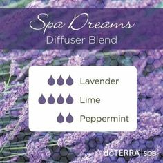 Spa Dreams diffuser blend with lavender, lime, and peppermint essential oil