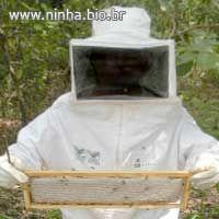 roupa protetora apropriada para cuidar de abelhas