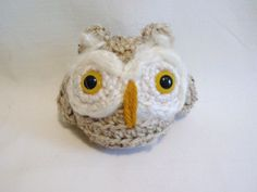 SWOOPS the Owl