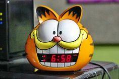 Garfield: ele pode ser seu gato