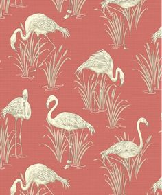Flamingo Wallpaper - Lagoon - Coral http://www.wowwallpaperhanging.com.au/flamingo-wallpaper/