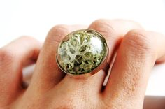 Moss Ring - Moss Jewelry Moss Jewellery Rings Moss Terrarium handmade Terrarium jewelry Real flower Botanical Forest jewelry Nature Ring by BFoxyJewelry on Etsy