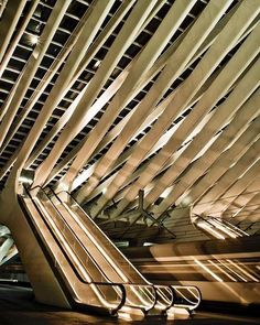I just have to see this: Santiago Calatrava – Liège-Guillemins Train Station Space Architecture, Beautiful Architecture, Beautiful Buildings, Contemporary Architecture, Architecture Details, Santiago Calatrava, Modern Buildings, Ceiling Design, Carters Baby