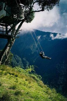 Treehouse swing in Ecuador- for the adrenaline junkie - Imgur