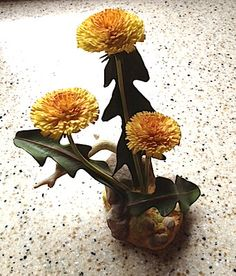 BOEHM Dandelion Porcelain Flower Ref: 20498 Made in England | eBay