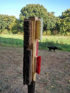 Another great scratching post!