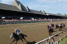 saratoga springs, new york - Google Search Saratoga Race Track, Saratoga Springs New York, New York Summer, Summer Time, Summer Fun, New York Vacation, Upstate New York, Horse Racing, New England