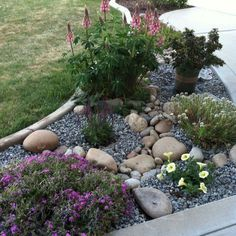 Adorable 65 Gorgeous Front Yard Rock Garden Landscaping Ideas https://moodecor.co/2748-65-gorgeous-front-yard-rock-garden-landscaping-ideas/