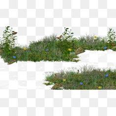 풀덤불.,꽃,관목,풀,잔디밭 Photoshop Rendering, Photoshop Design, Photoshop Elements, Landscape Art, Landscape Architecture, Landscape Design, Landscape Photography, Grass Photoshop, Grass Clipart