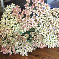 Mad crush right now on this blushy peach achillea. The baby florets are perfection. Anyone tried seed saving and successfully growing from favorite achillea colors ? #achillea #blush #peach #flowerfarm #seedsaving #grownnotflown #shoplocal #chestercounty #farmher #flowerlife #yarrow #summer #blooms #love #sundayfunday