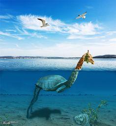 (2012-03) Giraffe + turtle = girtle?