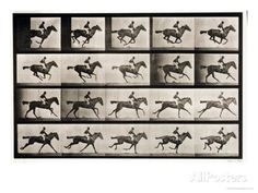 Jockey on a Galloping Horse, Plate 627 from