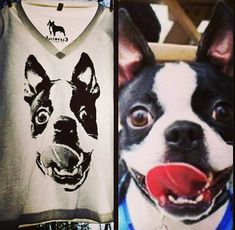 Zukki would look so cute on a shirt! LOL ...Custom Create YOUR own Shirt with YOUR Dogs Picture by Clevotine, $40.00