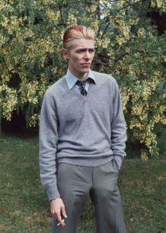 Bowie. No complaints.