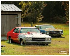What A Waste - A 70 and 71 Chevelle. It looks like the 71 has been sitting there longer.