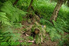 Learning to move as a Sniper at Woodoak Wilderness, Surrey, England UK www.woodoak.co.uk