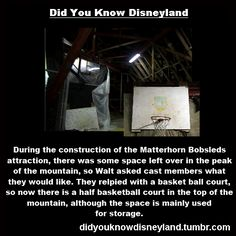 Did You Know Disney Tumblr