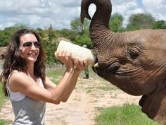 Kristin Davis needs a helicopter for elephants.