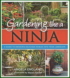 Angela England Book Banner