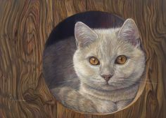 Cat Print featuring the painting Angel Eyes by Lucie Bilodeau