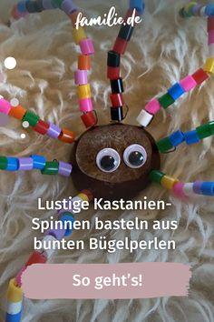 Wer mich persönlich kennt, weiß, dass es zwei Dinge gibt, die ich in und ums Haus so gar nicht leiden kann: Spinnen und Kastanien-Figürchen, die irgendwo auf der Kommode verstauben. In der Kombination dagegen habe ich sie lieben gelernt. Meine Lieblingsbeschäftigung im Herbst mit den Kids heißt jetzt: Kastanien-Spinnen basteln! #halloween #grußel #horror #diy #love #spinne #art #spooky #basteln #kastanie #herbst #scary #october #herbst