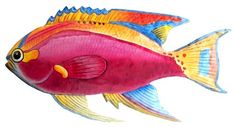 Tropical Fish Wall Decor - Painted Metal Tropical Fish Wall Art
