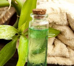 olio-essenziale-melaleuca-tea-tree-oli-proprieta-benefici-come-usarlo