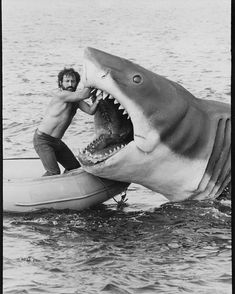 Jaws Film, Jaws Movie, Jaws 2, Classic Horror Movies, Classic Films, Shark Illustration, 80 Tv Shows, Horror Icons, Great White Shark