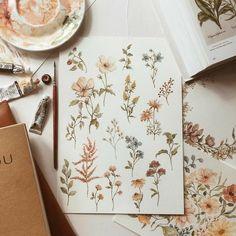 Watercolor Flowers, Watercolor Paintings, Watercolour, Wildflower Drawing, Nature Drawing, Botanical Drawings, Floral Illustrations, Watercolor Illustration, Love Art