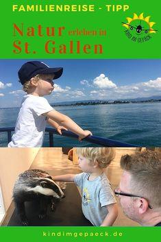 Aktivitäten in der Natur in St. Gallen - Make Up Forever Reisen In Europa, St Gallen, Travel Guide, City, Nature, Teenager, Restaurants, Board, Nature Activities