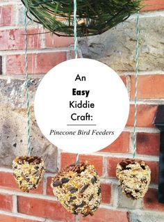 An Easy Kiddie Craft: Pinecone Bird Feeders | The Mommy Dialogues