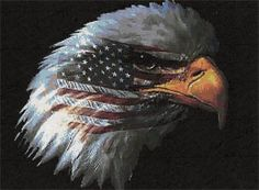 American Pride - Cross Stitch Pattern   I stitched this for a retired military friend in 2012. Very beautiful.