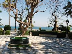 "¡Cádiz, brillante Cádiz! Tú eres el primer lugar del mundo. ""Lord Byron, 1809"" Cadiz, Andalusia, Spain, Lord Byron, Plants, Wave, Monuments, Viajes, Cities"